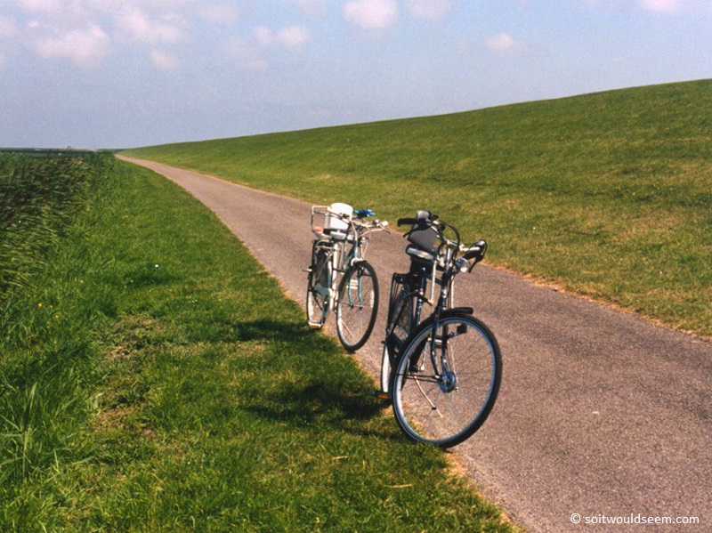 bicycles on path in holland