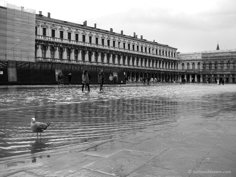 piazza san marco venice flooded