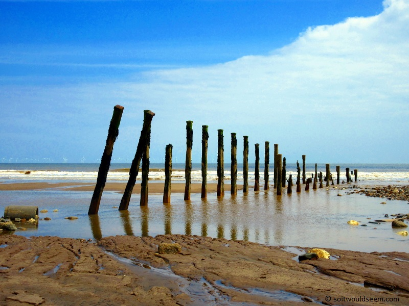 Still We Stand - old pilings at Spurn Point, Yorkshire